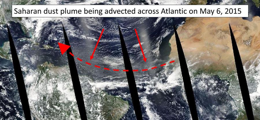 Satellite image showing a plume of Saharan dust crossing the Atlantic Ocean