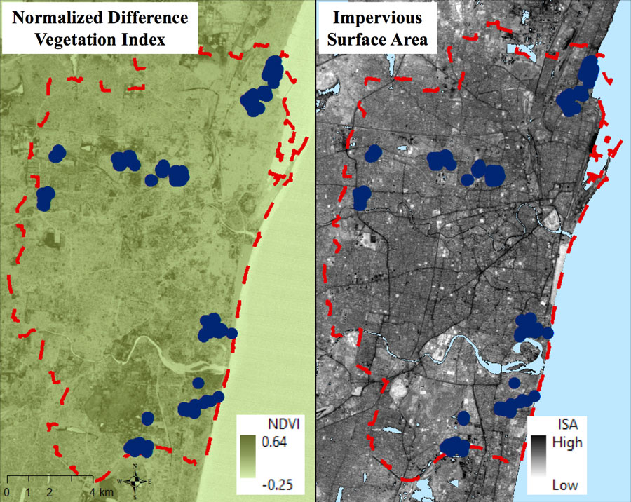 Data images comparing greenness and impervious surface area in Chennai, India