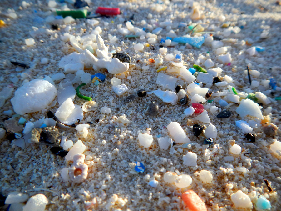Photograph showing plastic and microplastic pollution