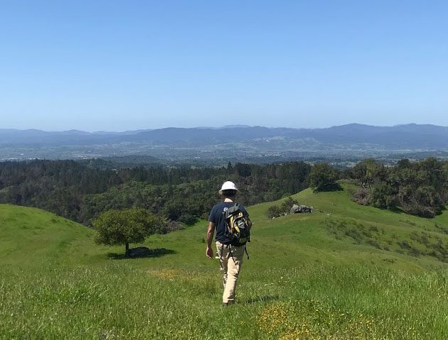 Sonoma landscape showing a man walking out to a field to place portable sound recorders.