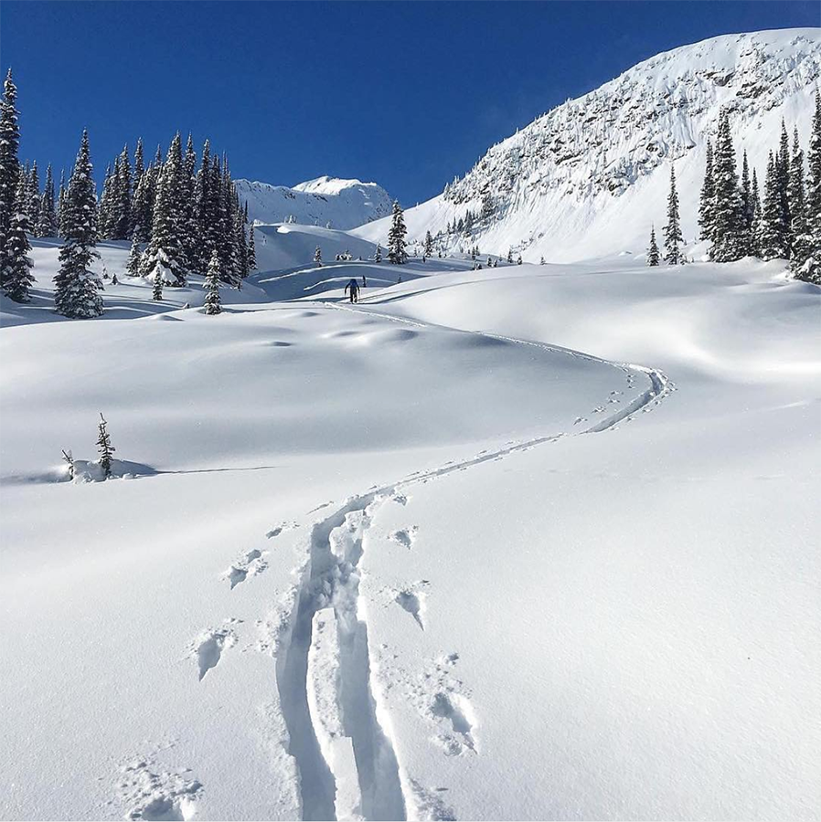 Trail made through snow by someone walking.