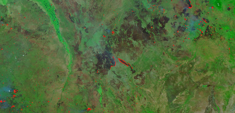 Fires in South Sudan on 13 January 2019 (Suomi-NPP/VIIRS)