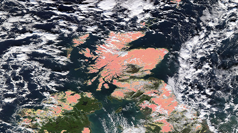 Snow across Scotland on 2 February 2019 (Aqua/MODIS)