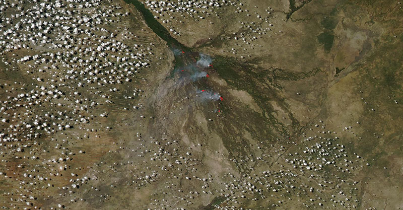 Fires in the Okavango Delta, Botswana on 17 March 2019 (MODIS/Aqua)