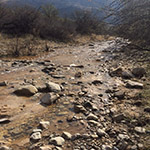 Photo of a dry river bed receiving seasonal water flow.