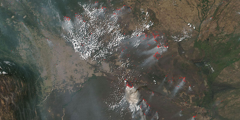 Fires in Bolivia on 24 August 2019 (Suomi-NPP/VIIRS)