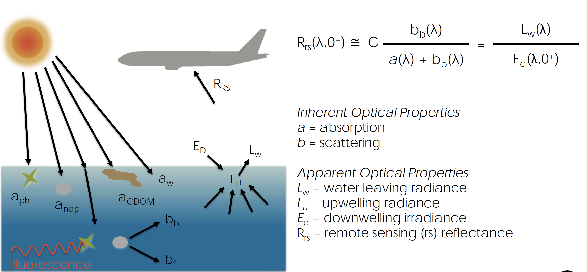 When light interacts with water, it can be absorbed or scattered. Through a series of complex algorithms, the relationship between this absorption and scattering can provide a remote-sensing reflectance value for the water-leaving radiance.