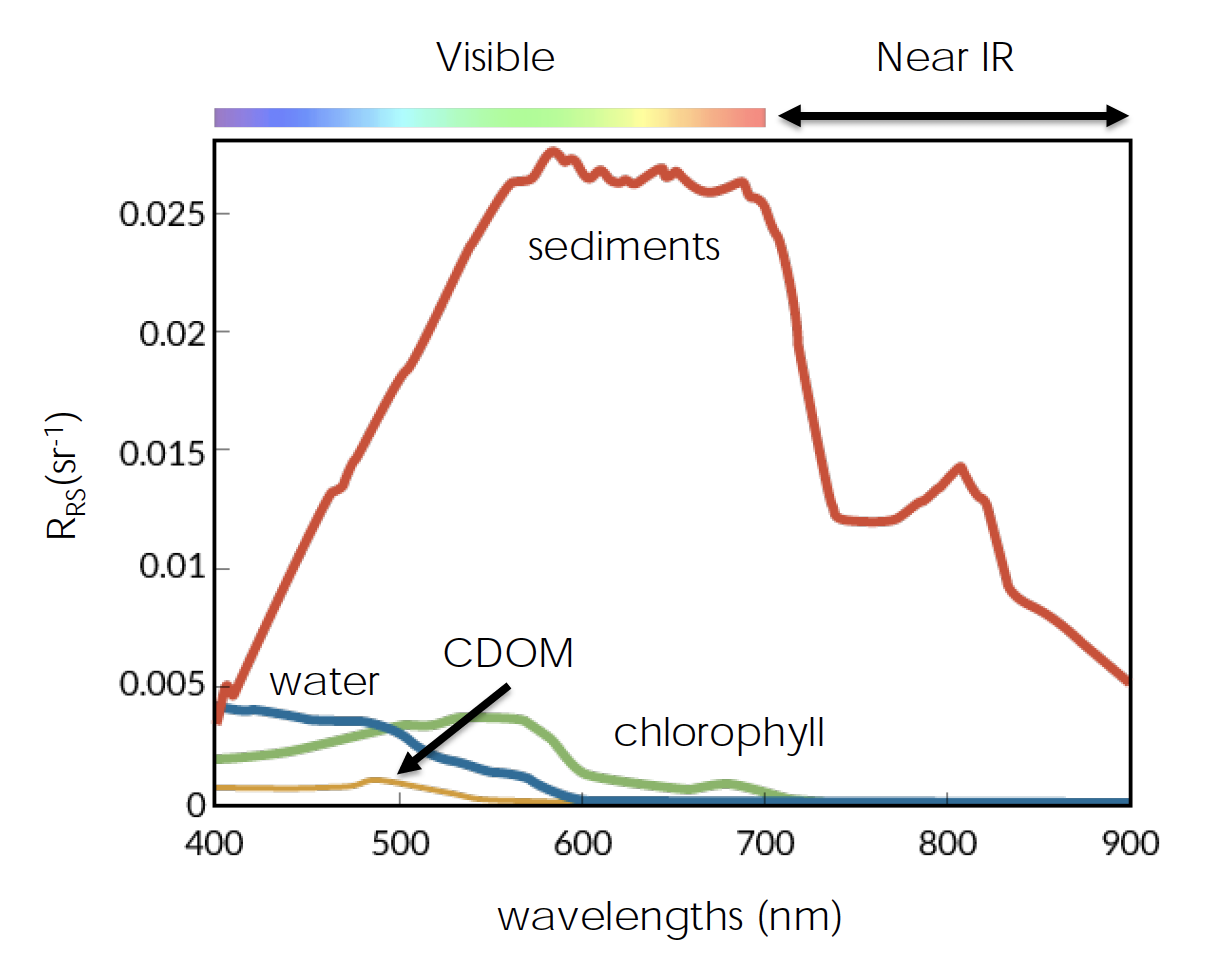 Spectral fingerprints, unique absorption/reflectance patterns at varying wavelengths of the electromagnetic spectrum, of ocean color parameters.