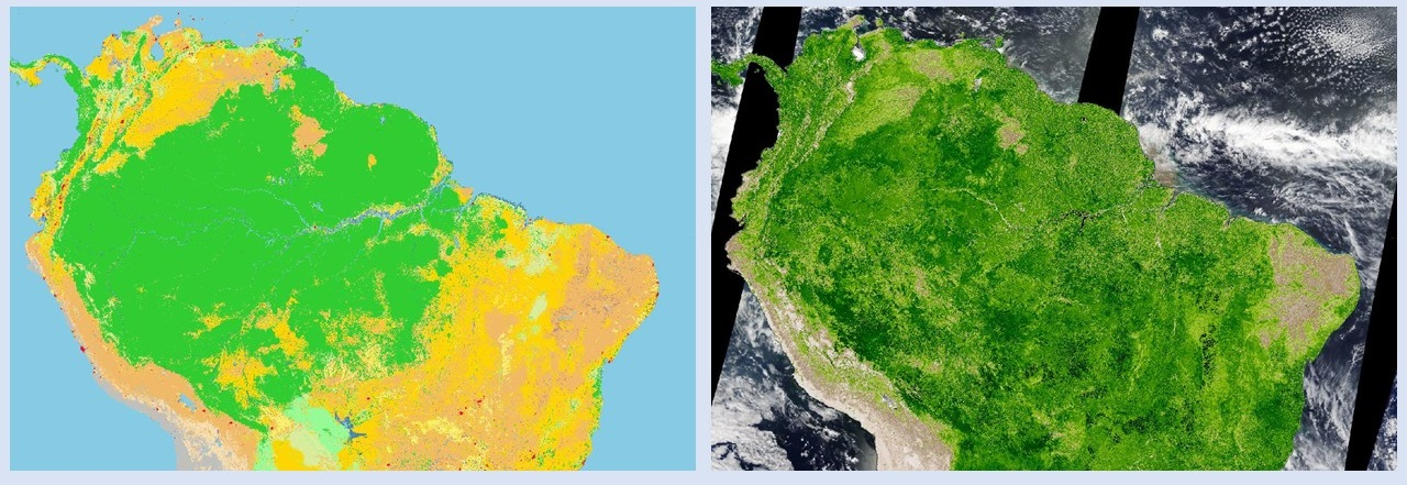 Side-by-side images showing two ways of looking at vegetation using MODIS data collected over South America. Left image is Land Cover Type, showing different colors representing different land cover types. Right image is the same view of South America, but overlain with MODIS Ehanced Vegetation Index data.