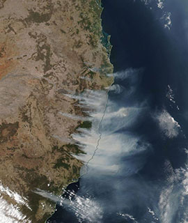 Fires in New South Wales, Australia on 12 November 2019 (Suomi-NPP/VIIRS)