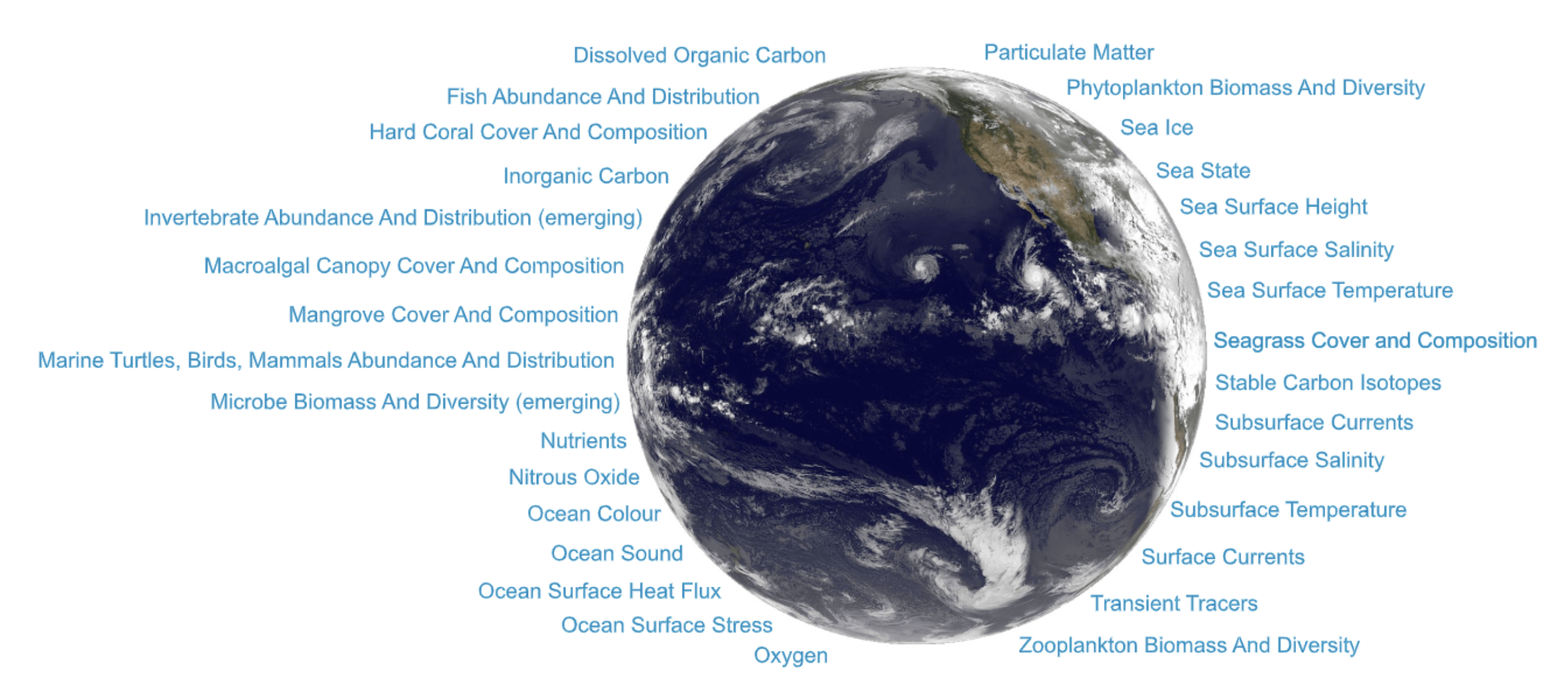 Essential Ocean Variables as defined by the Global Ocean Observing System. EOVs are focused on the physics of the ocean system, the biogeochemistry, and the biology and ecosystems.