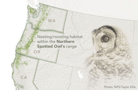 Map showing the area of study covered by U.S. Forest Service study of Northern Spotted Owls.