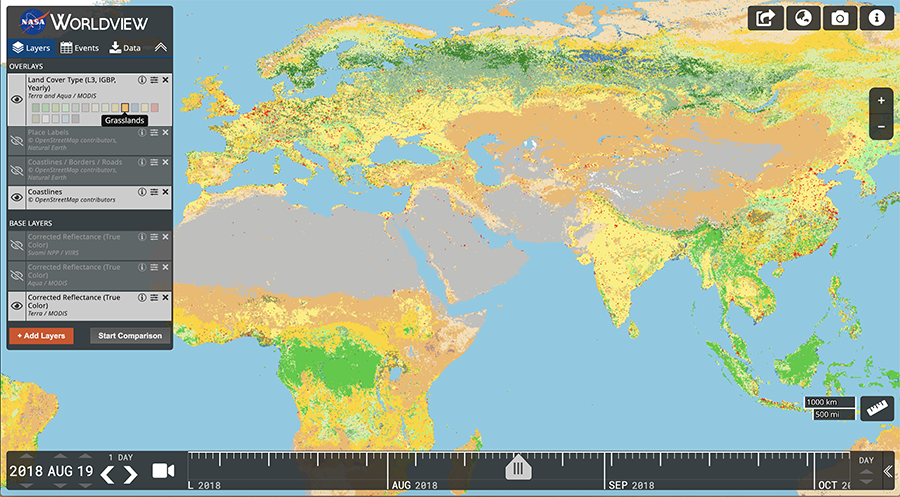 Visualization of the Terra and Aqua Moderate Resolution Imaging Spectroradiometer (MODIS) Land Cover Type in Worldview.