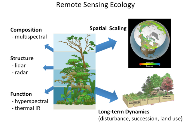 Ecological variables can be measured using multiscale remote sensing, modeling, and advanced analytical techniques. The type of instrument (active versus passive) and whether it operates in the visible, infrared, thermal infrared, and microwave portions of the electromagnetic spectrum allows for discerning different variables.