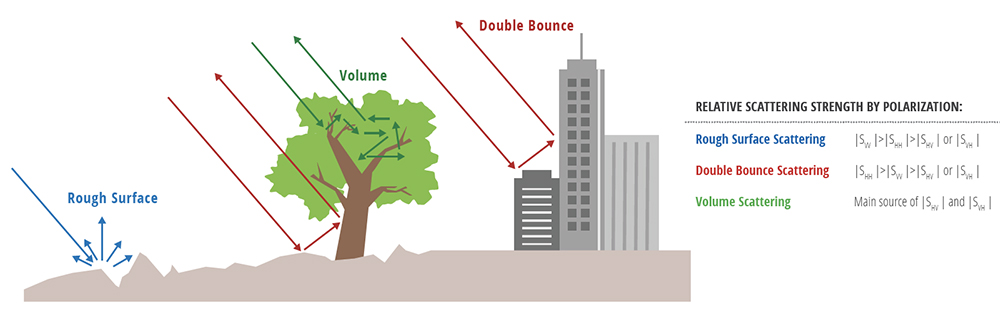 Strong scattering in HH indicates a predominance of double-bounce scattering (e.g., stemmy vegetation, manmade structures), while strong VV relates to rough surface scattering (e.g., bare ground, water), and spatial variations in dual polarization indicate the distribution of volume scatterers (e.g., vegetation and high-penetration soil types such as sand or other dry porous soils).