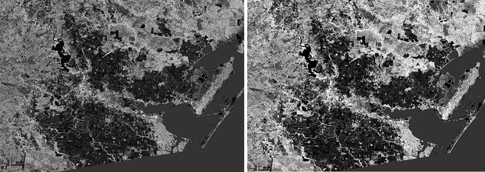Comparison of speckle in SAR imagery within Sentinel-1 Toolbox