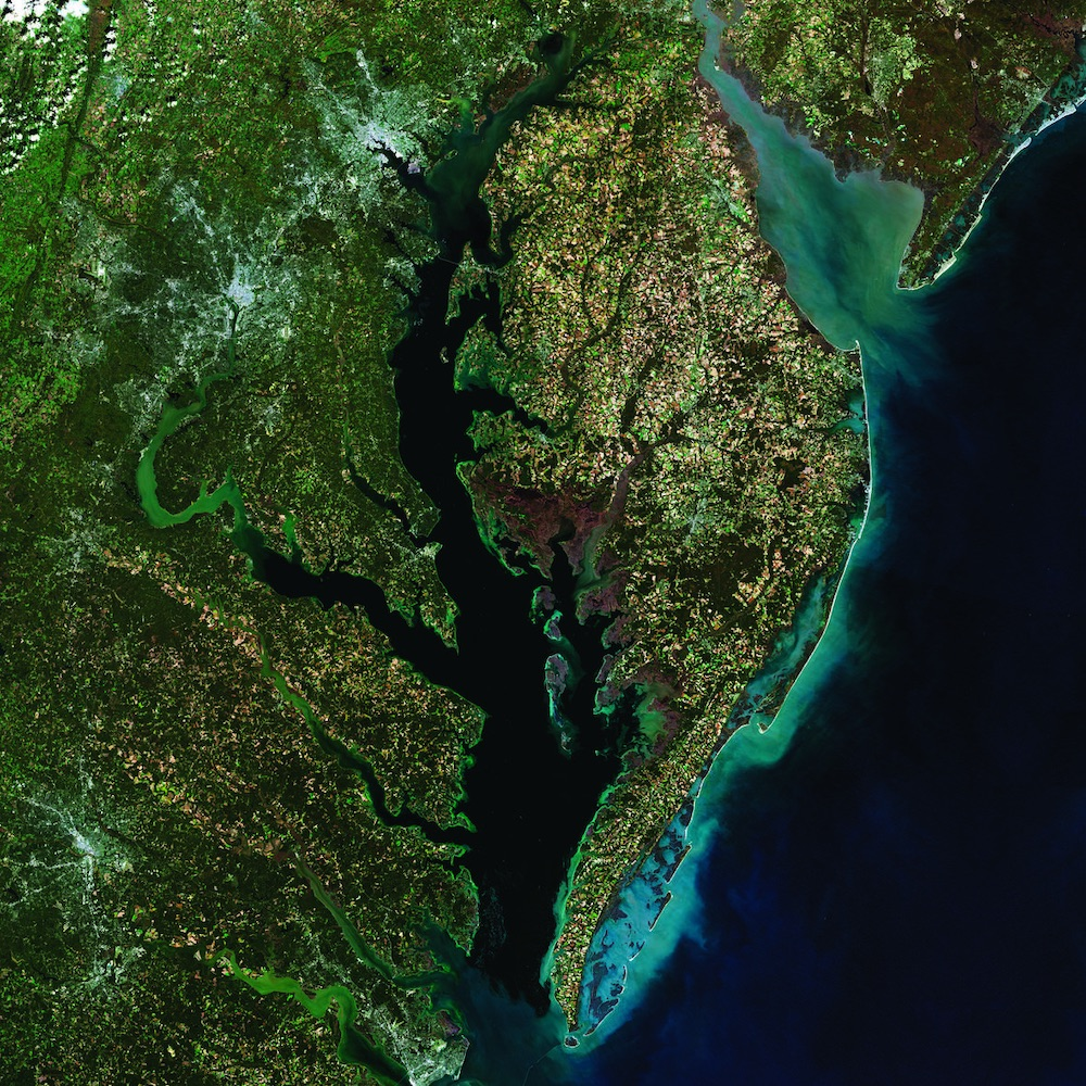Chesapeake Bay and surroundings, mosaic of 5 Landsat images taken in October and November 2014.