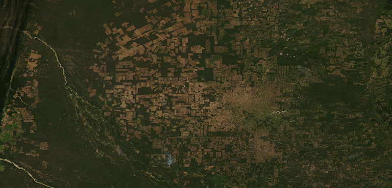 True color image of Agricultural Fields in Paraguay on 25 May 2020 (Aqua/MODIS)