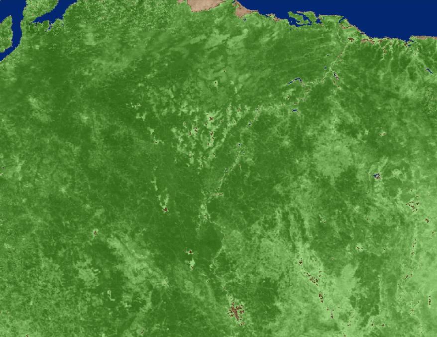 Screenshot of MOD13A1 data visualization over Brazil.