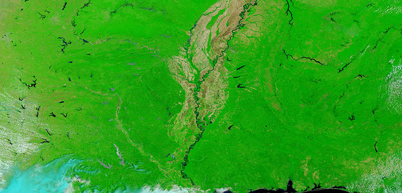 False color image of the Mississippi River on 31 May 2020 (MODIS/Terra)