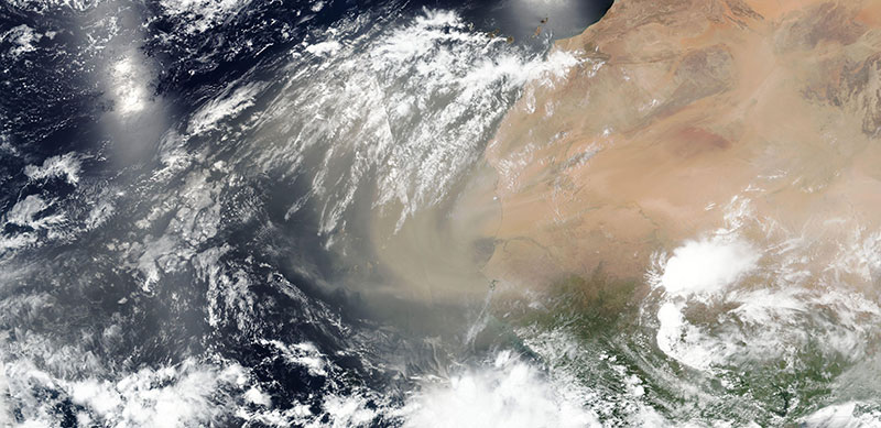 True color satellite image of dust blowing off the coast of western Africa on 14 June 2020 (Suomi NPP/VIIRS)