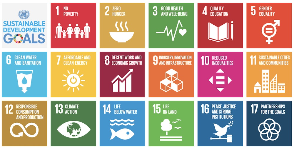 17 goals within the Sustainable Development Goals (SDG) framework