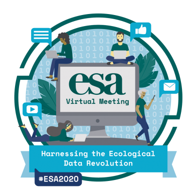 "Blue logo with words ""ESA Virtual Meeting"" inside the image of a computer monitor."