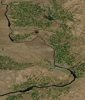 Agriculture in Eastern Washington on 19 July 2020 (Aqua/MODIS) - Feature Grid20 Aqua