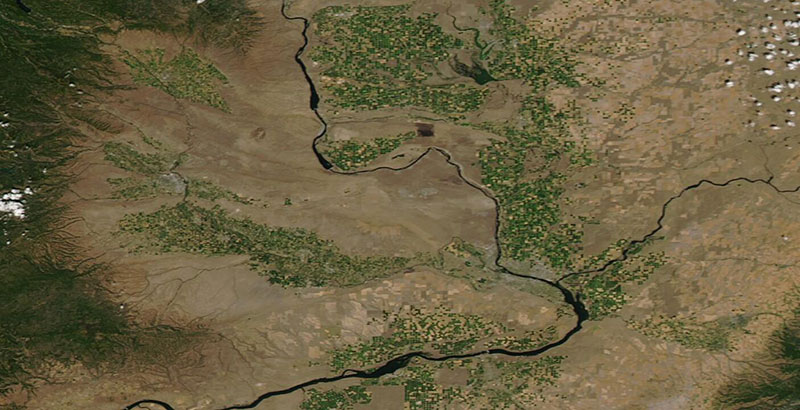 Agriculture in Eastern Washington on 19 July 2020 (Aqua/MODIS)