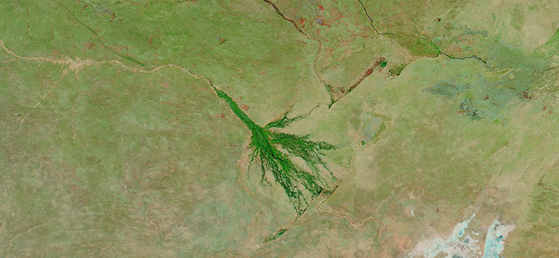 Okavango Delta, Botswana on 10 August 2020 (MODIS/Aqua)