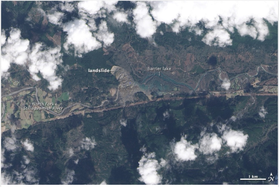 The Operational Land Imager (OLI) on Landsat 8 acquired the above image of landslide debris from the Oso, Washington landslide and the barrier lake that formed subsequently on March 23, 2014.