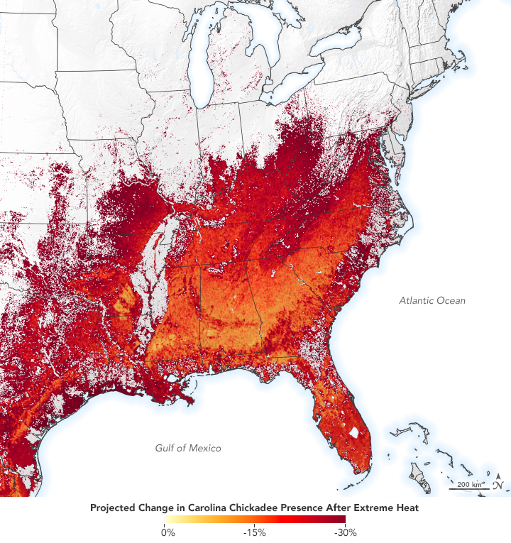Map of the reduced presence of the Carolina Chickadee after a week of extreme heat.