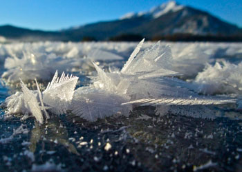 Photograph of frost flowers on ice