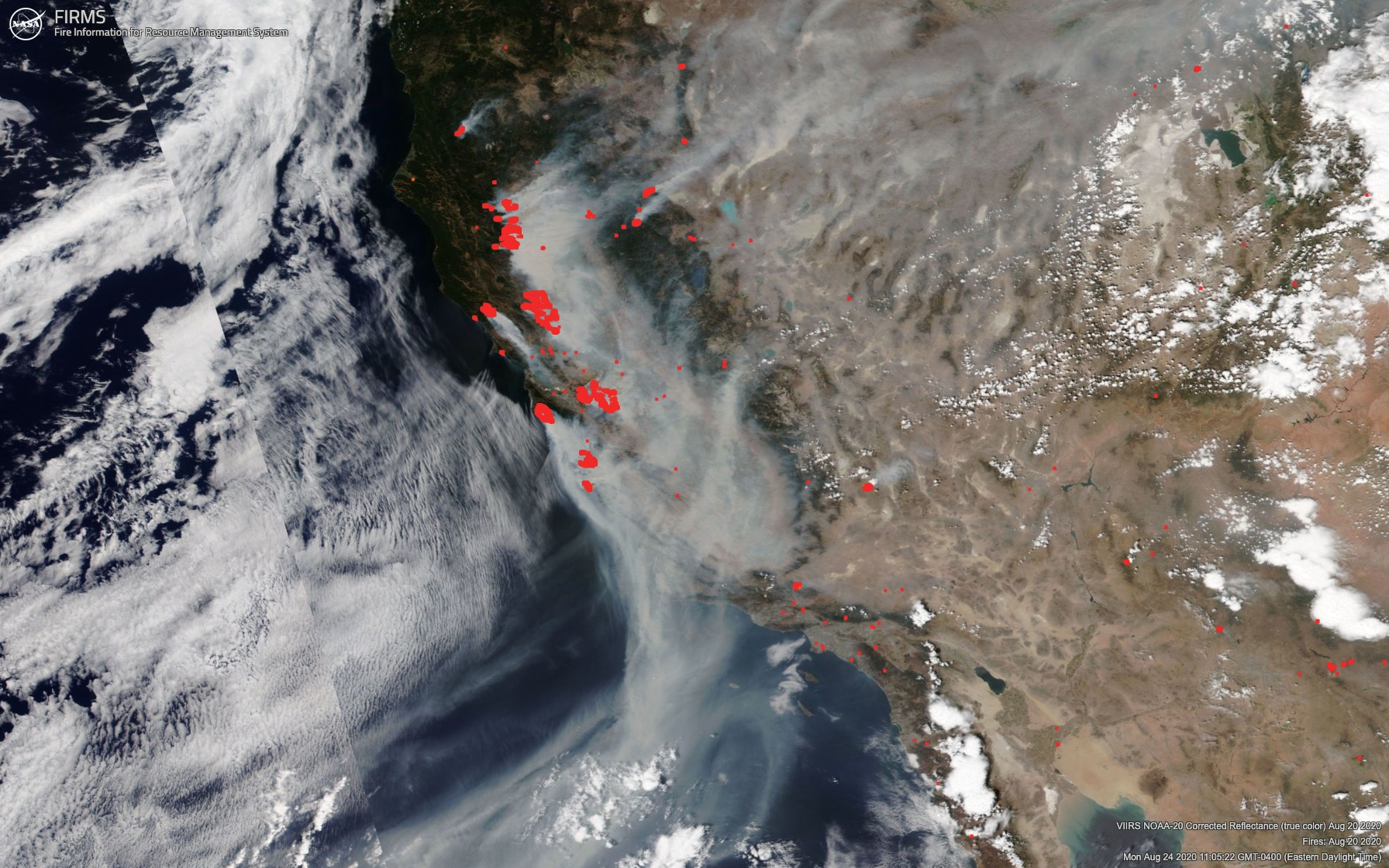 Fire detection data for August 20, from NASA's Fire Information for Resource Management System (FIRMS), shows many fires in California.