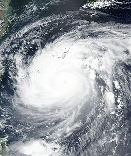 Typhoon Maysak on 31 Aug 2020 (Suomi NPP/VIIRS) - Feature Grid