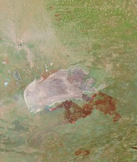 Etosha Pan, Namibia on 18 October 2020 (Terra/MODIS) - Feature Grid