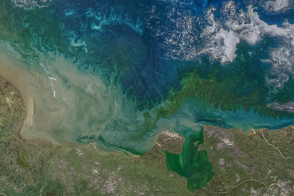 Image of the coast of the East Siberian Sea with swirls of green color mixed in with deep blue water. Areas of brown sediment hug the coast.