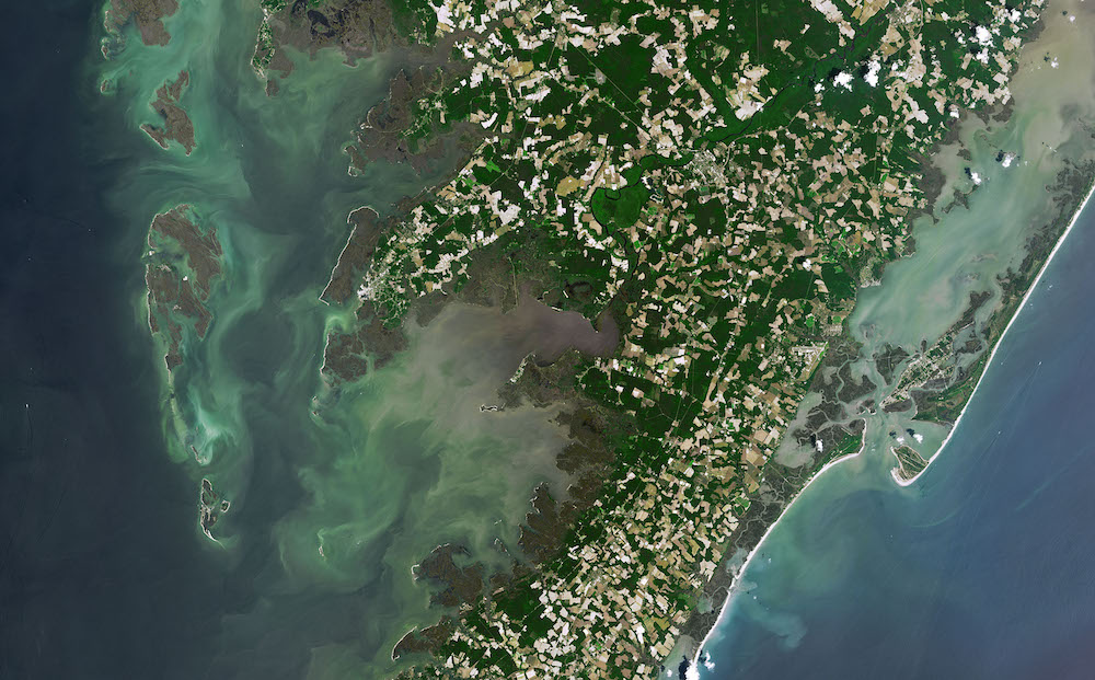 Assateague and Chincoteague provide a rare example of overlapping barrier islands. All of them are constantly in motion. June 2, 2019 image from the NASA / USGS Landsat 8 Operational Land Imager (OLI). Credit: NASA Earth Observatory