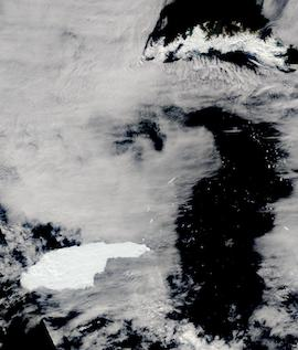 Iceberg A68A Approaching South Georgia Island on 3 December 2020 (Terra/MODIS) - Feature Grid