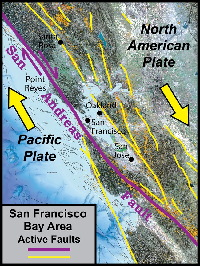 Map of the U.S. West Coast near San Francisco with arrows showing the movement of tectonic plates.