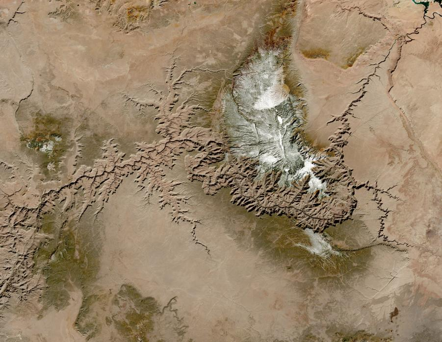 Cloud free image of the Grand Canyon at 30-meter resolution.