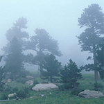 Fog often forms when relatively humidity is at 100%. Credit: UCAR