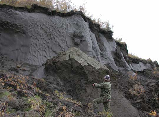 Photograph of a yedoma permafrost ice wedge