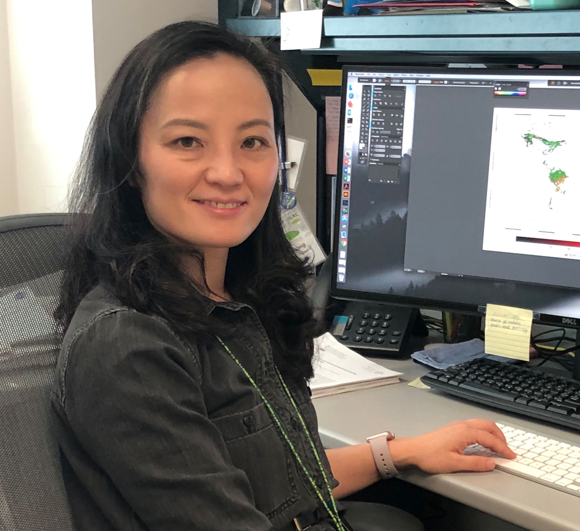Dr. Qing Liang at her computer.