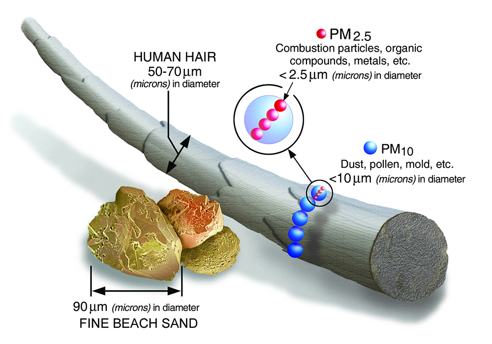 Size comparisons for particulate matter as compared to each other, a human hair, and beach sand. Credit: Environmental Protection Agency