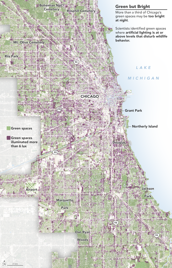 Map of where electric light pollution in Chicago is likely to have the largest effect on wildlife. The image shows the green spaces in Chicago and whether they are above or below light levels of 6 lux, the minimum light level where researchers observed behavior changes. Credit: NASA Earth Observatory