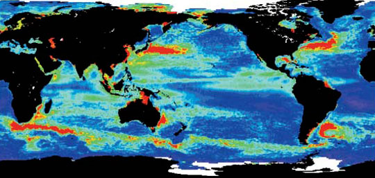 Data image showing global sea level anomalies