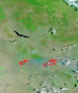 Telegraph and Mescal Fires, Arizona on 5 June 2021 (Suomi NPP/VIIRS) - Feature Grid