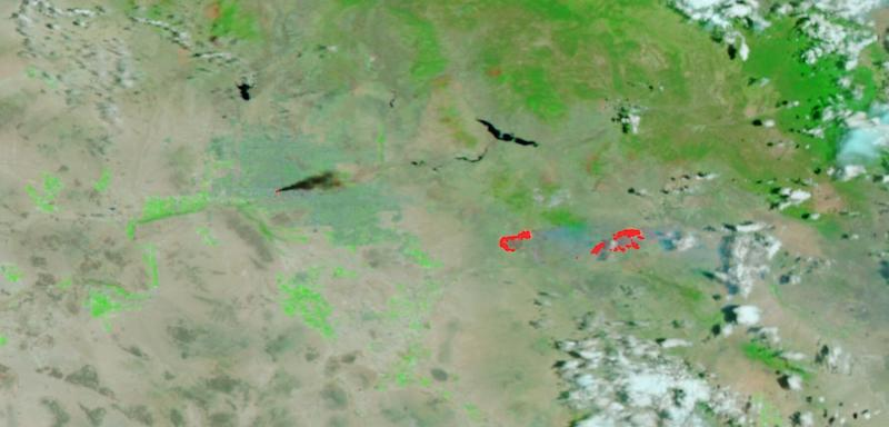 Telegraph and Mescal Fires, Arizona on 5 June 2021 (Suomi NPP/VIIRS)