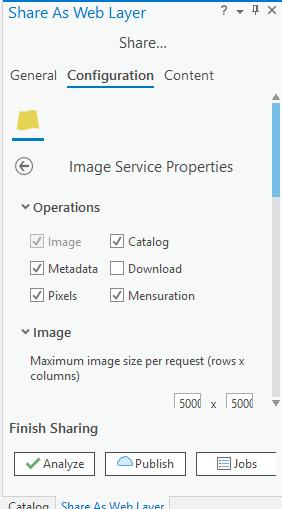 Image Service Properties